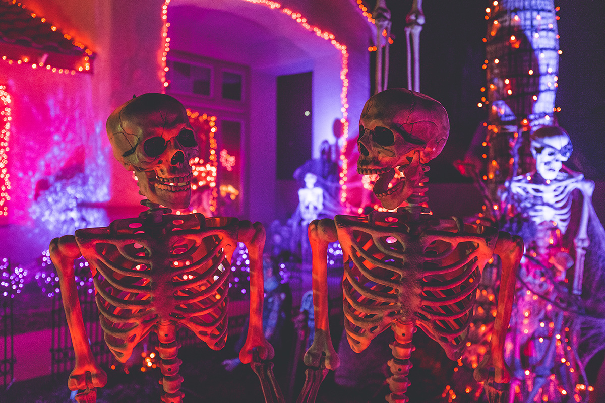 Sugarhouse Halloween Image